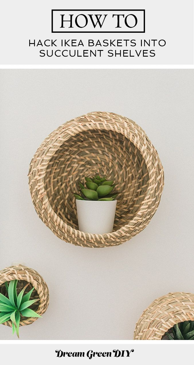 Photo of Hack IKEA Baskets Into Succulent Shelves