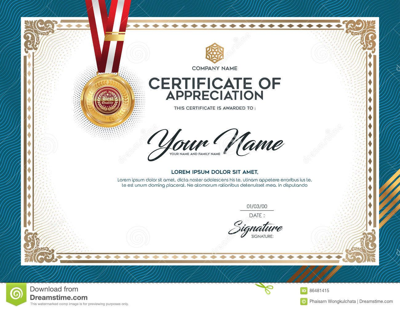 the layout and text format for certification stock vector