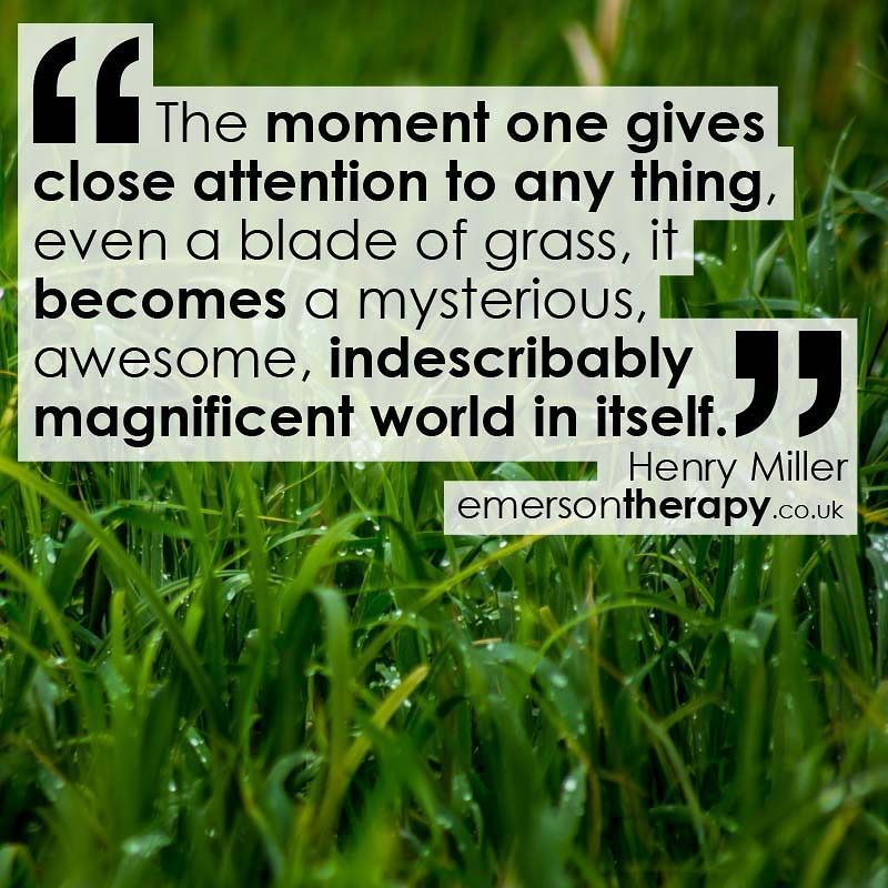 The moment one gives close attention to any thing even a blade of grass it becomes a mysterious awesome indescribably magnificent world in itself. Henry Miller