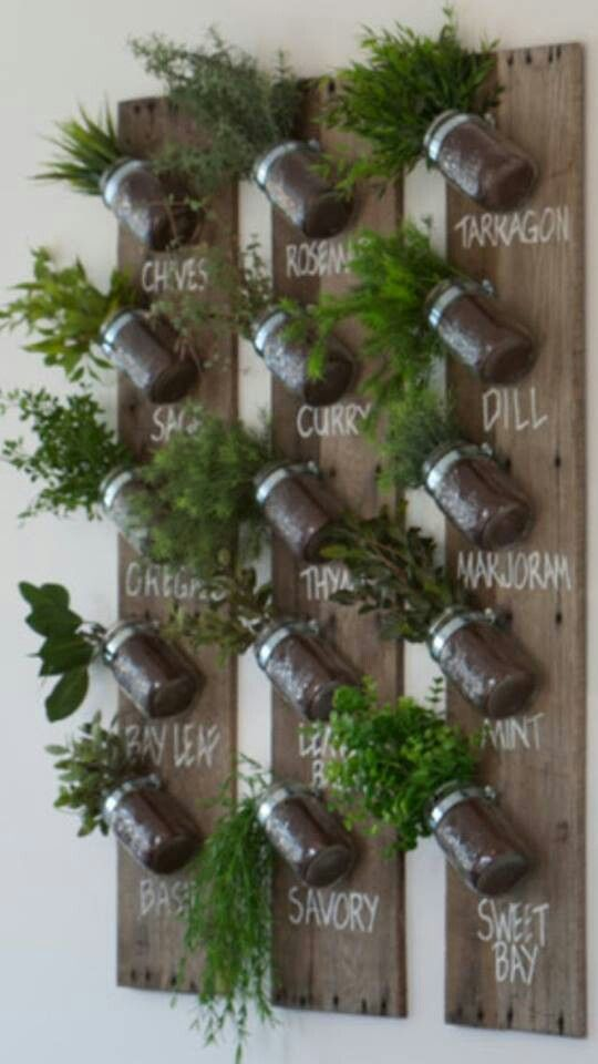 Herb Garden Pots And Plants On A Board That S Awesome Http Mason Jar