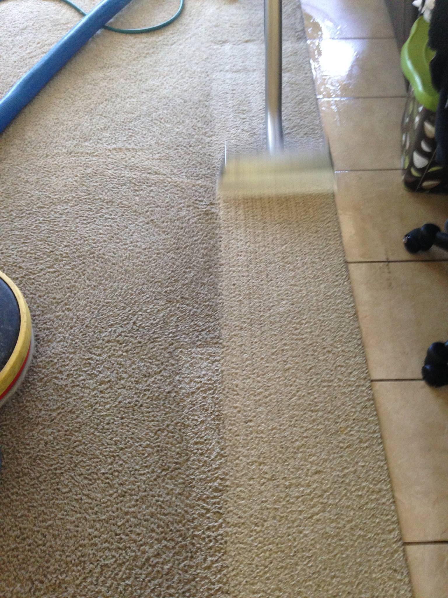 Best Carpet Cleaning In Temecula Ca Feels Free To Follow Us In 2020 How To Clean Carpet Carpet Cleaners Best Carpet