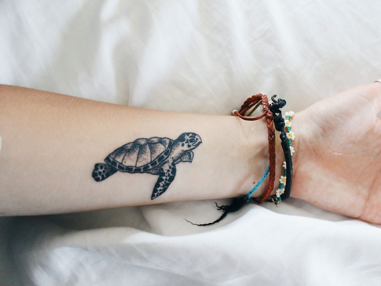 Carlynotcarley new tattoo check out my amazing tattoo for Little turtle tattoo