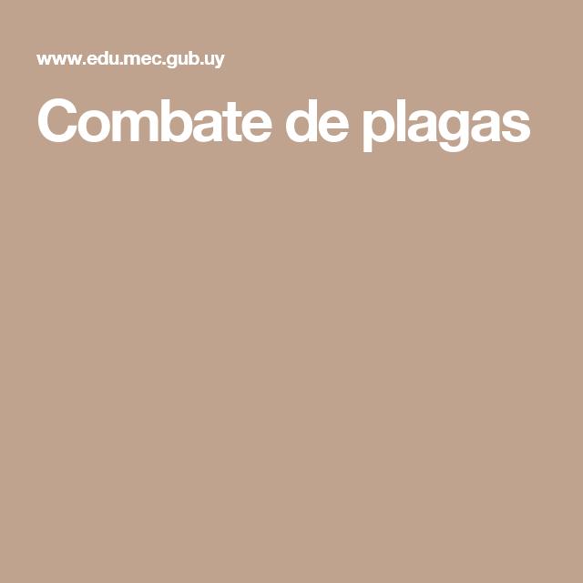Combate de plagas