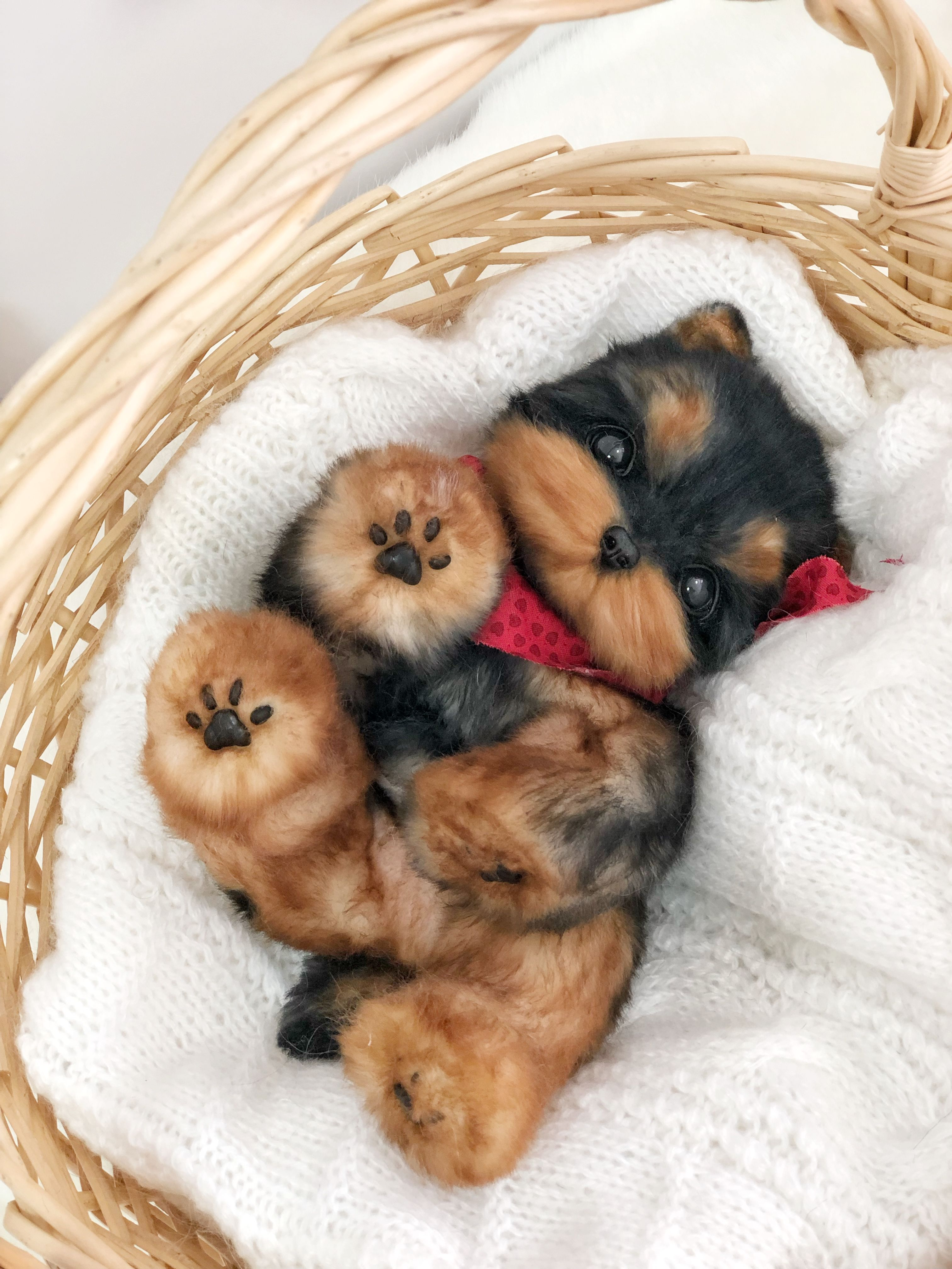 Collectible toy in the style of realistic. Puppy of breed
