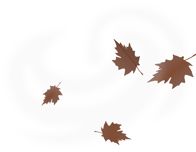 Image Result For Drawn Blowing Leaf Leaves Vector Maple Leaf Tattoo Colorful Drawings