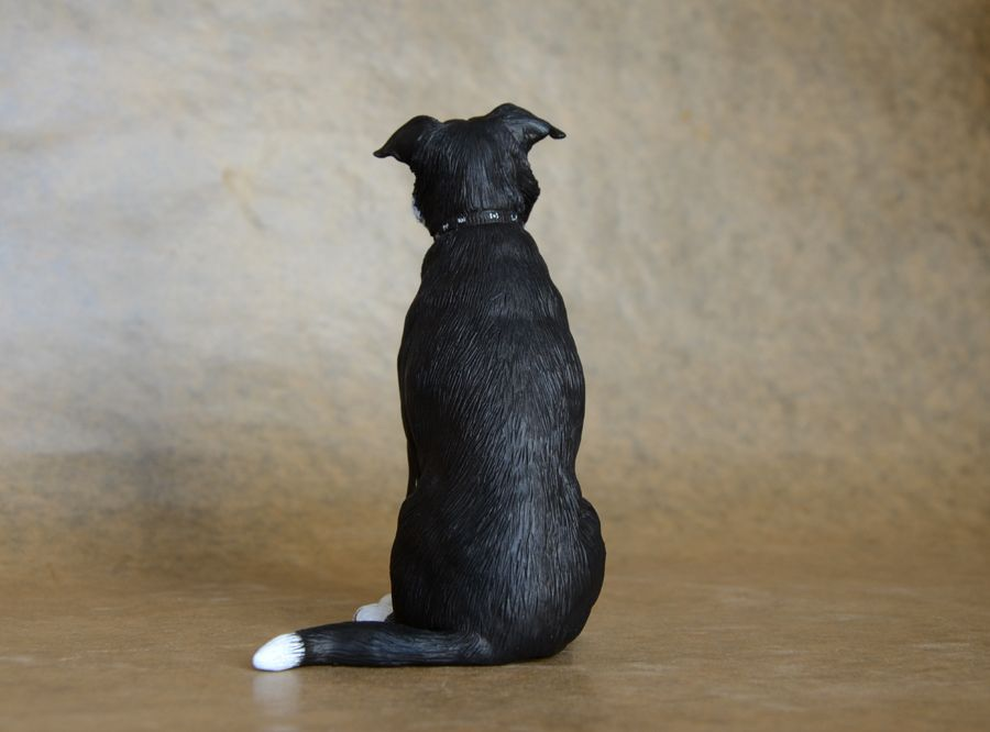 'Rocco' Smooth-coated Border Collie by Harriet Knibbs Sculptures