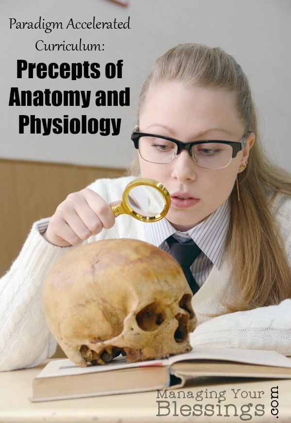 Bonito Anatomy And Physiology Homeschool Curriculum Modelo ...