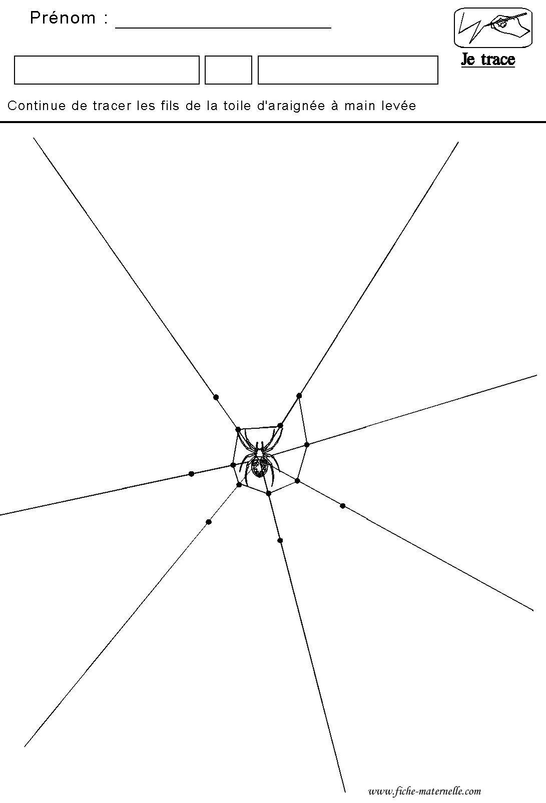 Graphisme Tracer Des Lines De La Toile D Araignée Toile D