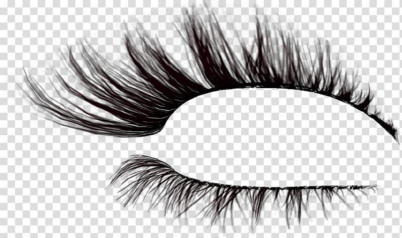 Pin By Eusunne On Fashion Design And Sketching Eyelash Illustration Eyelashes Perfect Eyelashes