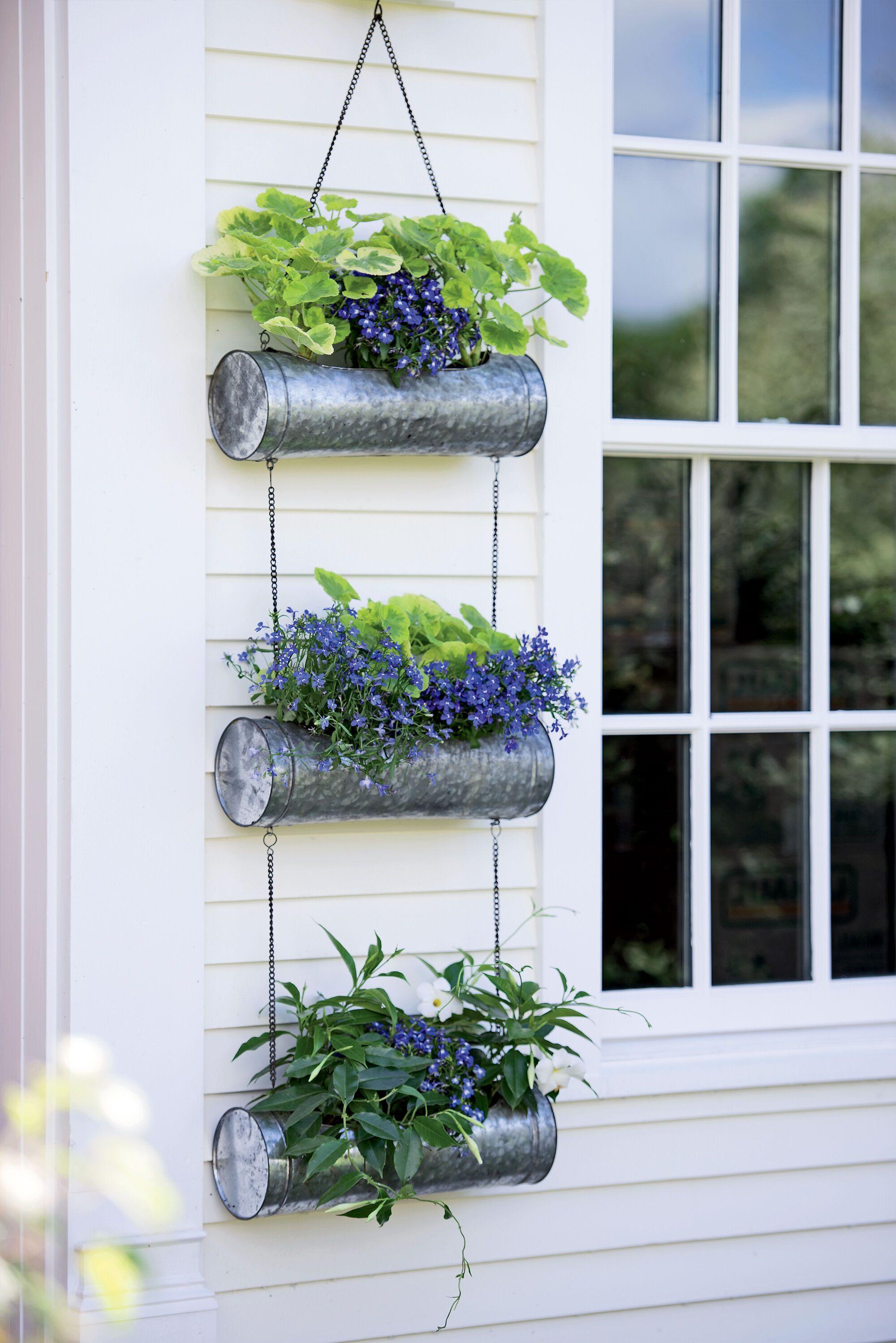 Patio Garden In 2020 Hanging Plants Hanging Plants Indoor Hanging Planters Outdoor