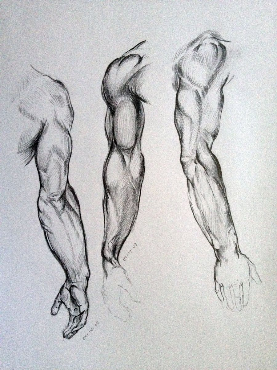 Arm Sketches by AdanMGarcia.deviantart.com on @DeviantArt | Anatomy ...