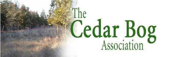 Cedar Bog