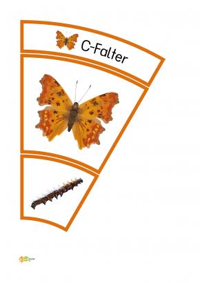 Legekreis Schmetterlinge Kigaportal Kindergarten Montessori Material Selber Machen Raupe Schmetterling Schmetterling