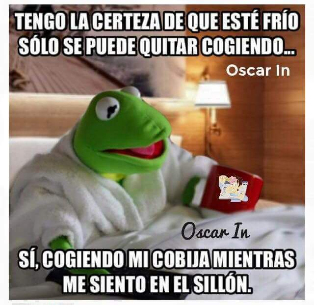 Pin By Ada Santos On Frases Citas Y Mas Humor Funny Pictures Funny