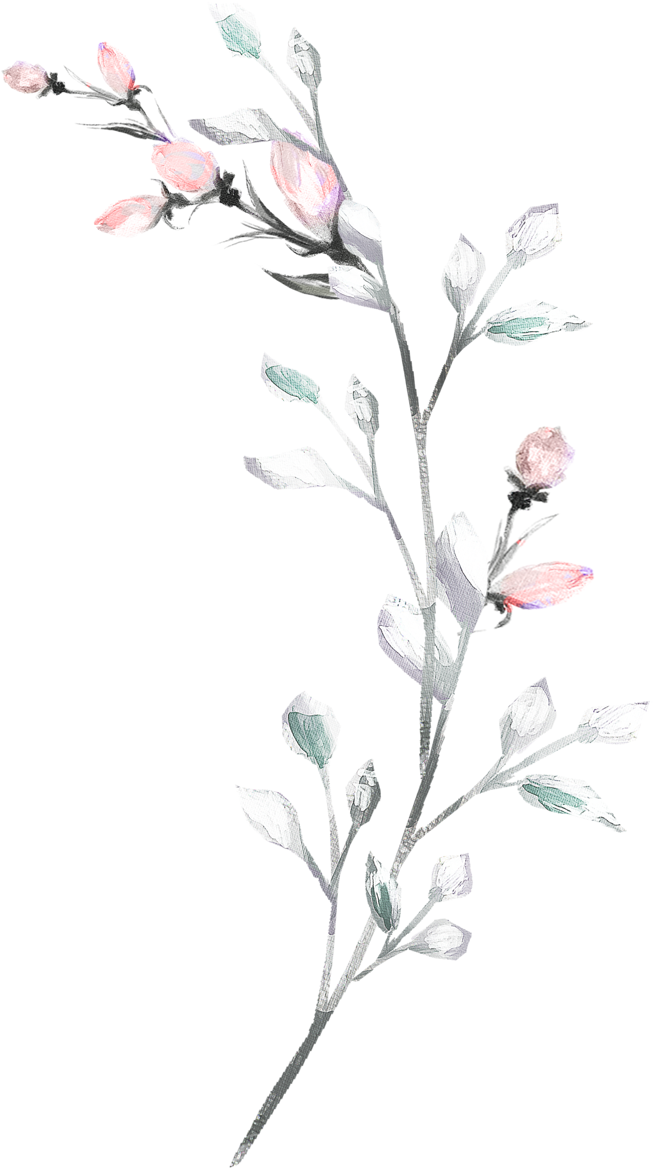 Pink flower white clock art print of my original watercolor flower painting