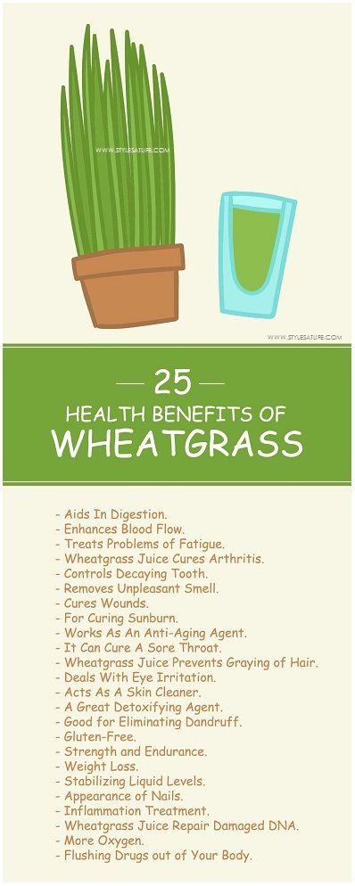 wheatgrass weight loss stories