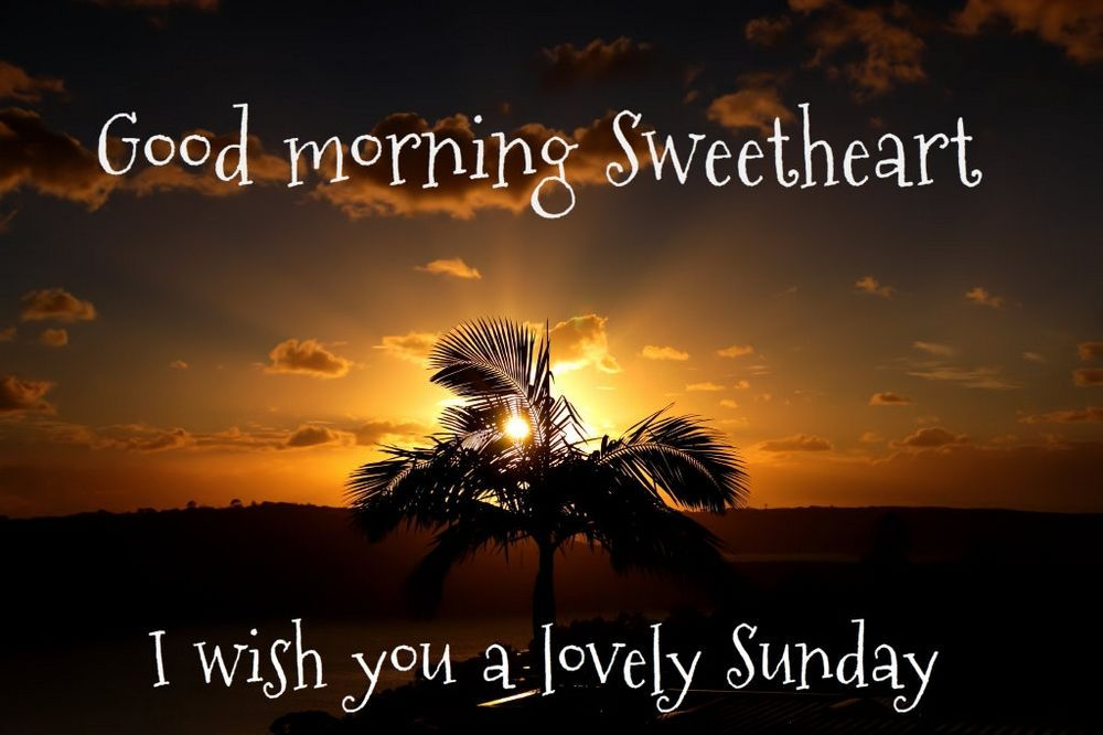 Good Morning Sweetheart I Wish You A Lovely Sunday Good Morning Sunday Sunday Morning Sweetheart Good Morning Happy Sunday Cute Good Morning Images
