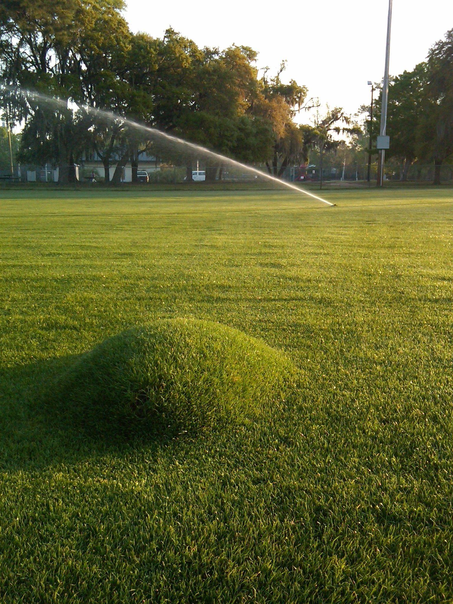 Earth blister. Sports turf, Turf, Golf courses