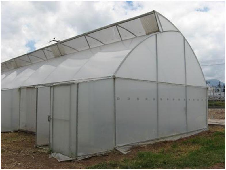 Construcci n de tu propio invernadero si tienes un huerto y quieres protegerlo de las - Fabricar un invernadero ...