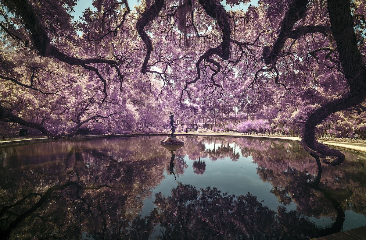 Sony World Photography Awards 2019 Open Competition Early Entries World Photography Best Landscape Photography Photography Awards