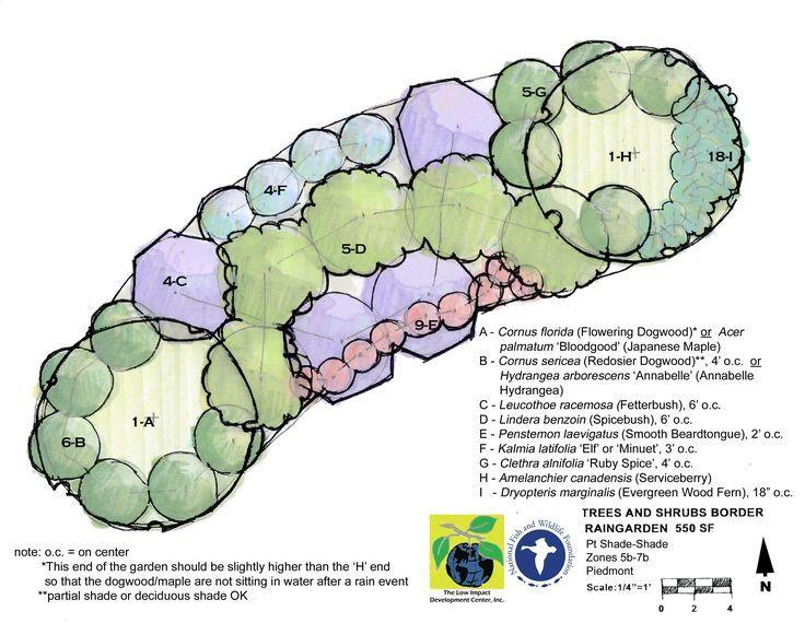 gardens - Garden Design Template