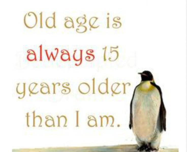 Always Young Funny Quotes Aging Quotes Getting Old