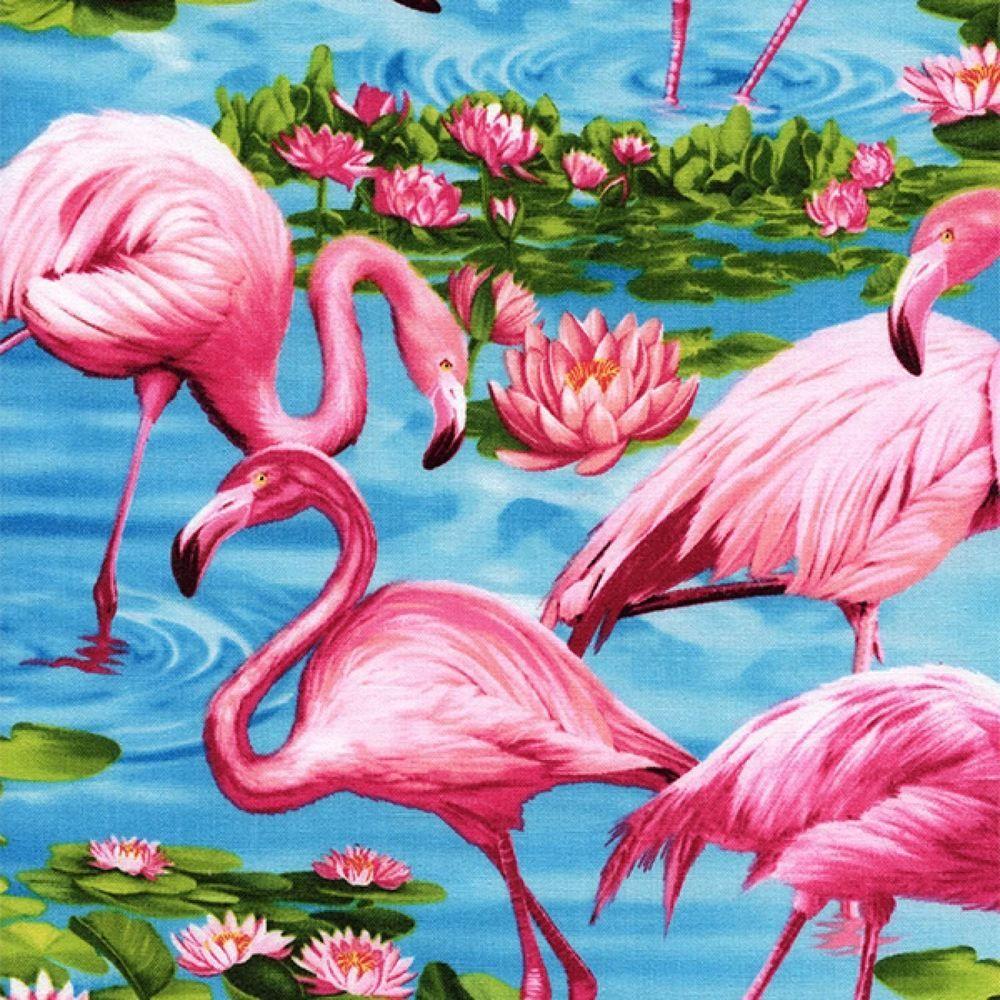 Дяди, красивые открытки фламинго