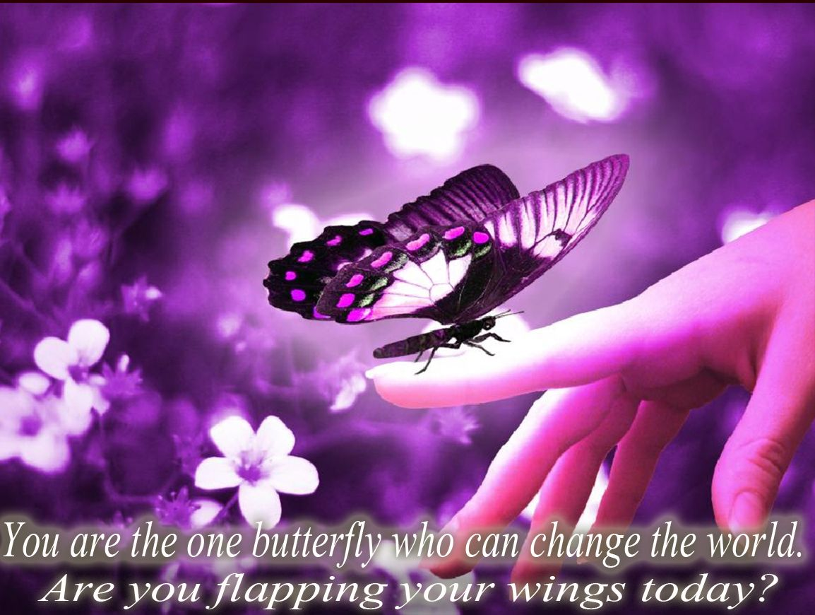 Ƹ̵̡Ӝ̵̨̄Ʒ You are the one butterfly who can change the world. Are you flapping your wings today?