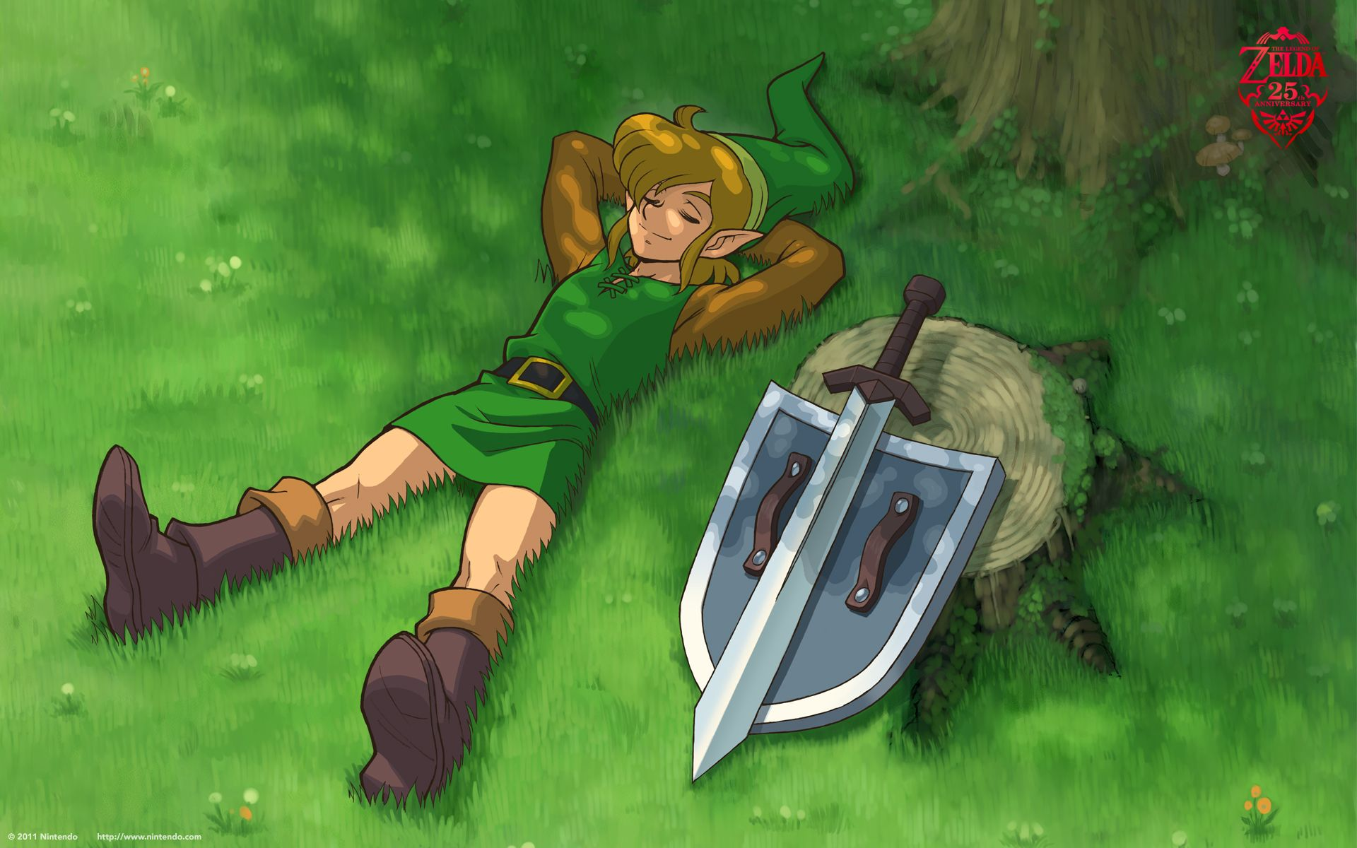 The Legend Of Zelda Wallpaper 25th Anniversary Wallpapers Legend Of Zelda Characters Legend Of Zelda Legend