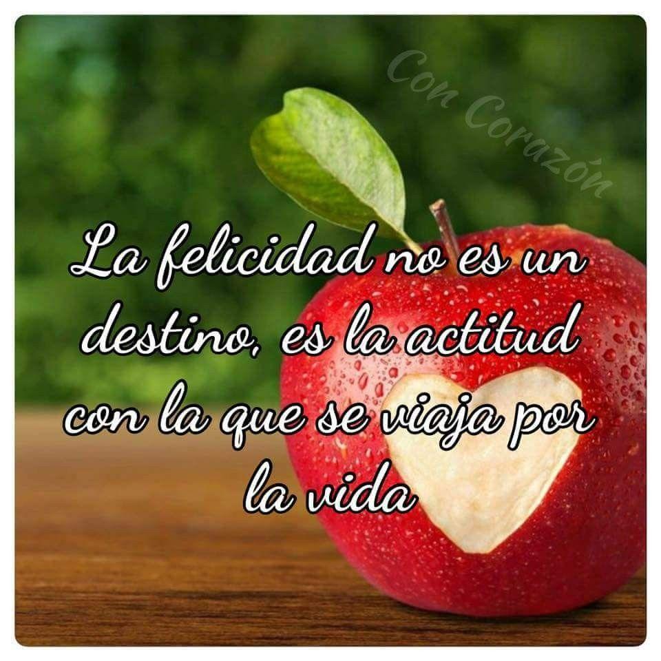Muy Buenos Días Feliz Miércoles A Disfrutarlo Frases Pinterest