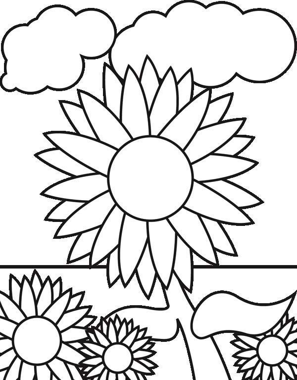 Sunflowers In The Garden Coloring Pagecoloring