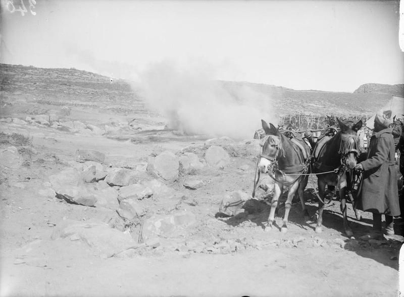 A shell bursting near a park of Indian transport carts on the Western Mule Track.