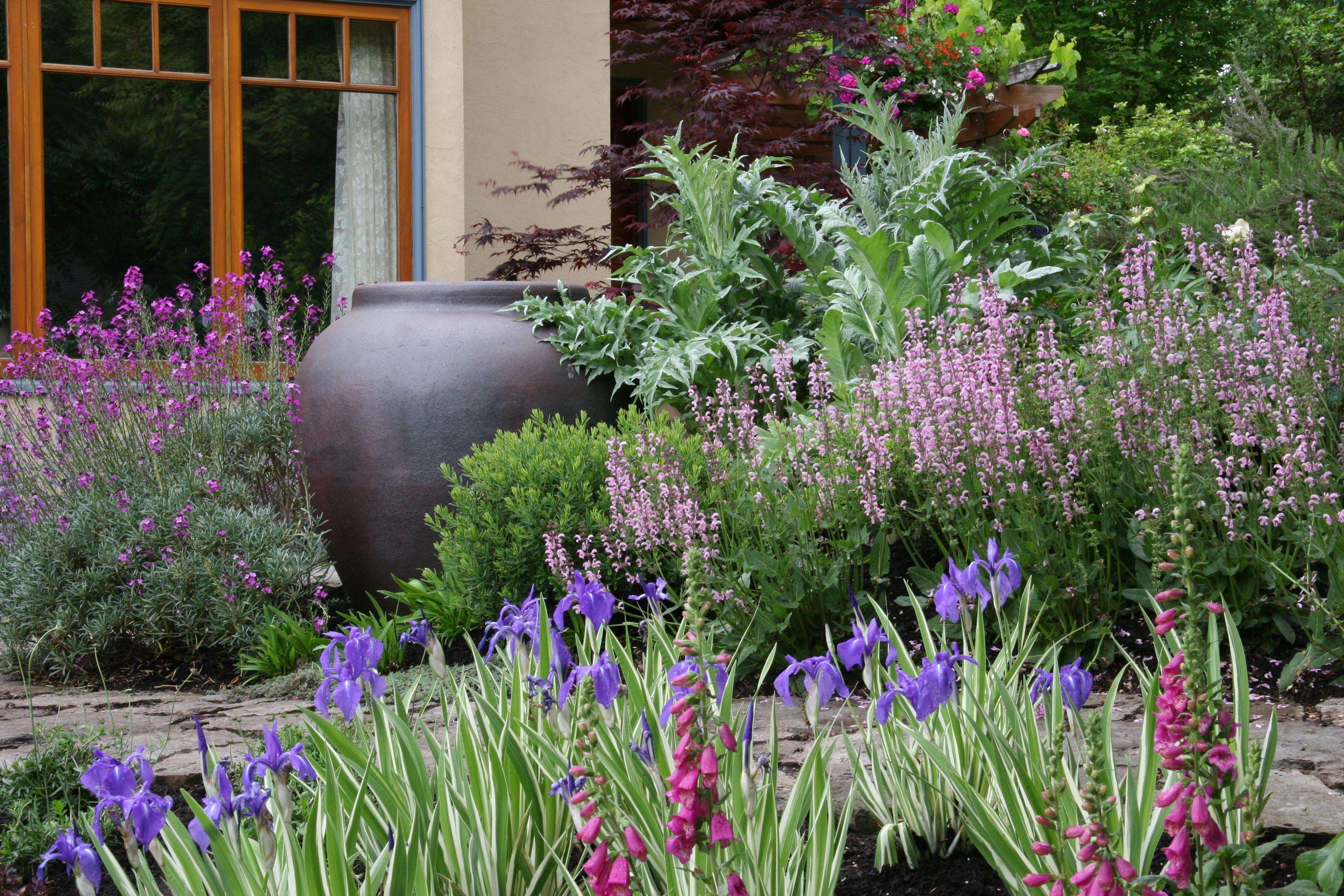 a deer resistant cottage garden