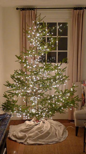 The Tree Christmas Tree Images Real Christmas Tree Country Christmas Trees