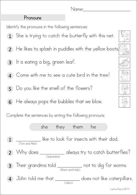 Grade 2 Homework An Introduction Pronoun Worksheets Grammar