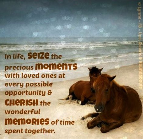 Ups Quote Gorgeous Moments And Memories Quote Via Ups Downs Roundabouts At Www