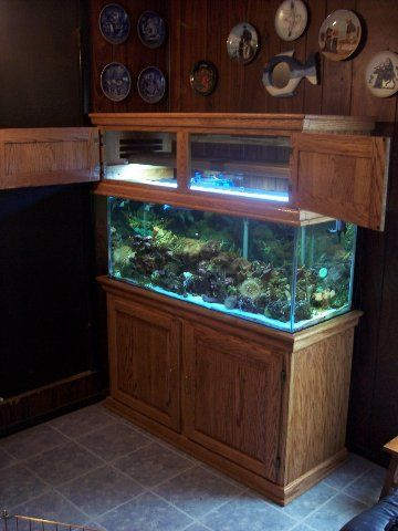 Canopy Also Flips Up Kitchen Inspiration Fish Tank