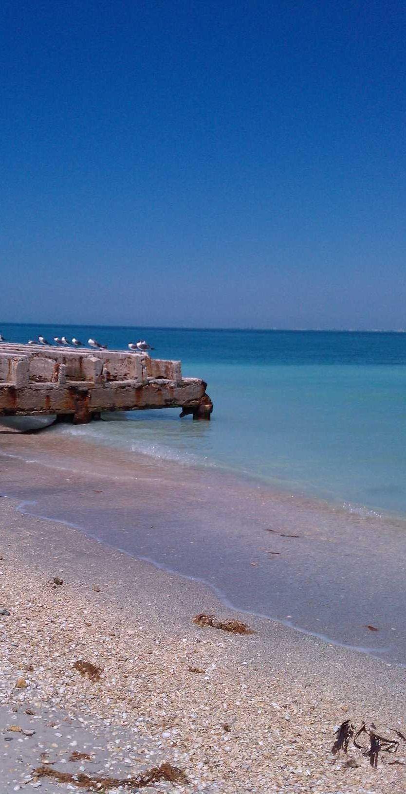 Egmont Key Island, Florida.