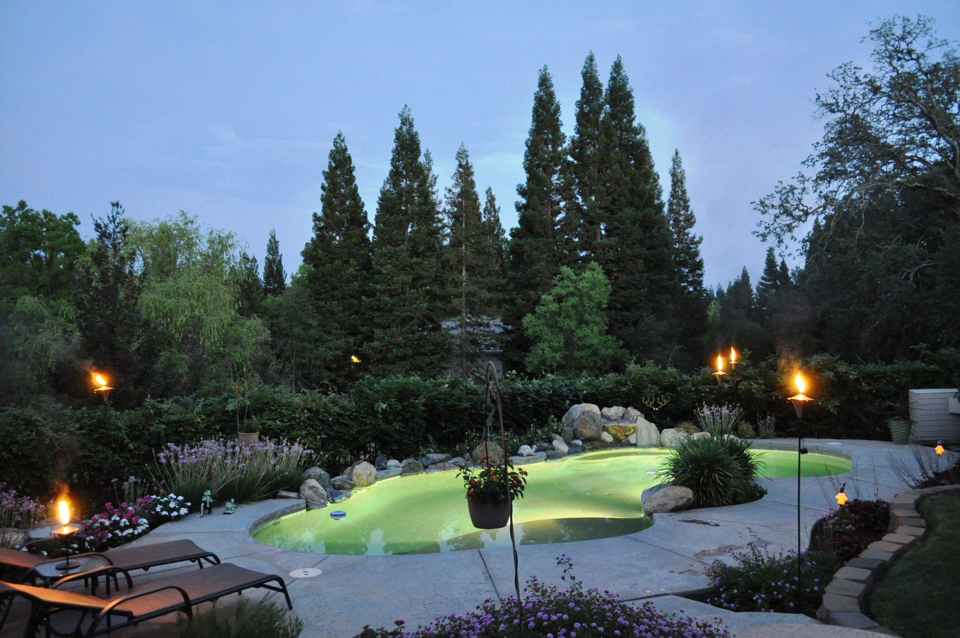 my backyard paradise the great outside pinterest backyard