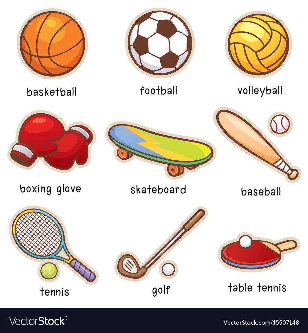 Sport Equipment Vector Image On Learning English For Kids English Vocabulary English Language Teaching