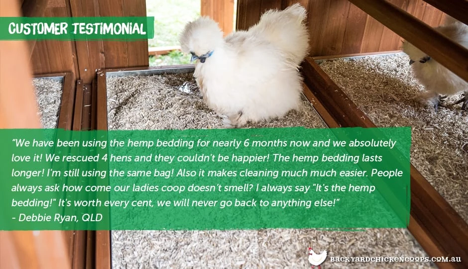 An Animal Lovers Guide To Hemp Bedding Fancy chickens