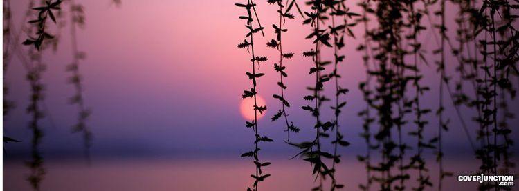 فداك قلبي رسول الله صل ـﷺـوا على جميـل الوجــﷺــہ وبـدر التمـام شفيـع الخلـق فـي ي Beautiful Sunset Beautiful Flowers Wallpapers Desktop Wallpaper