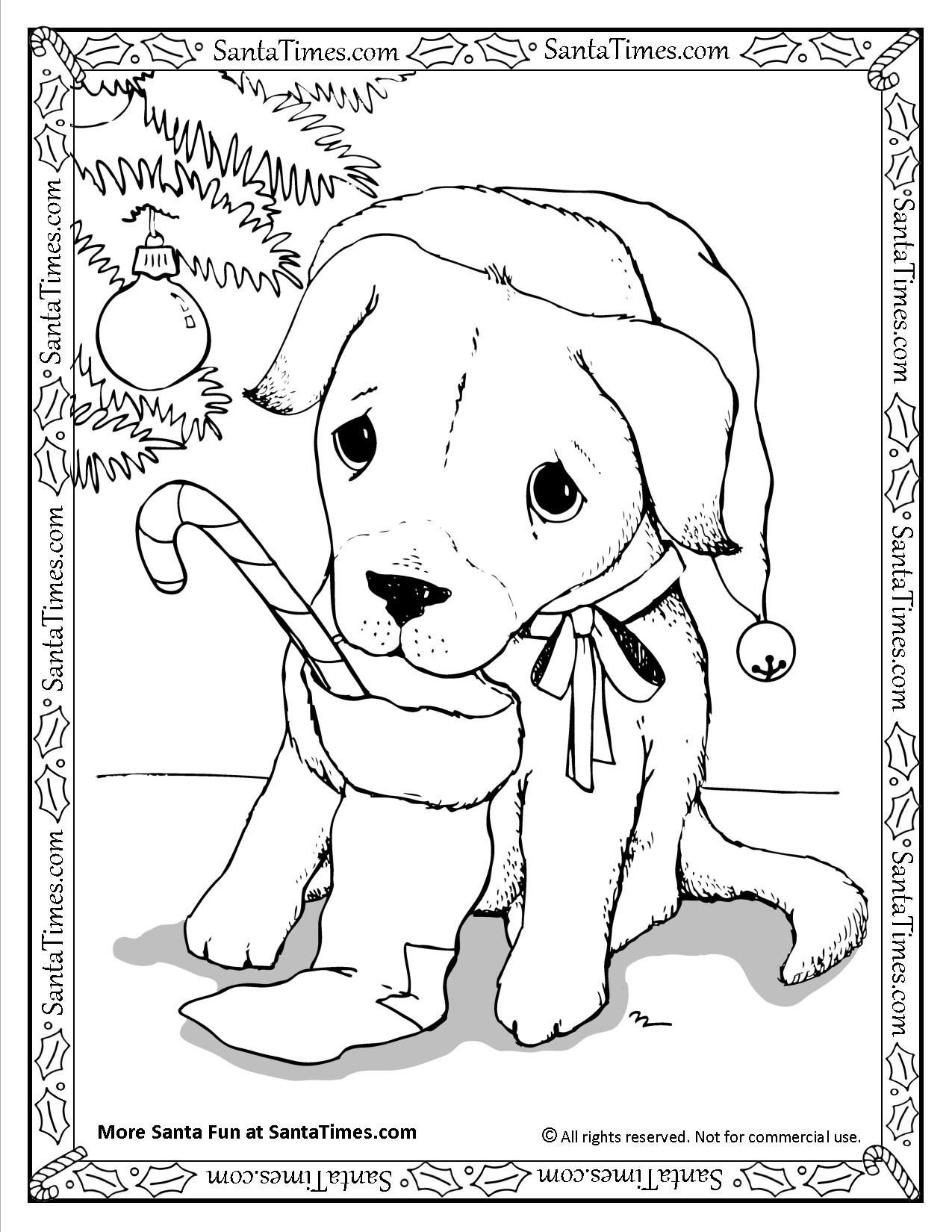 Santa Puppy Printable Christmas Coloring Page More Fun Activities And Coloring Pages At