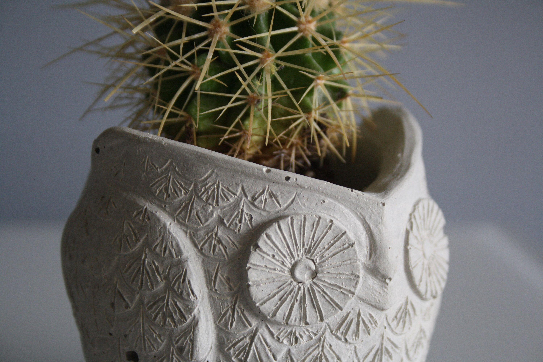 Mini Concrete Owl Planter for Cactus and Succulents, Concrete Planter, Office Decor, Minimalist Gift Idea, Home Decor, Plant-friendly #minimalisthomedecor
