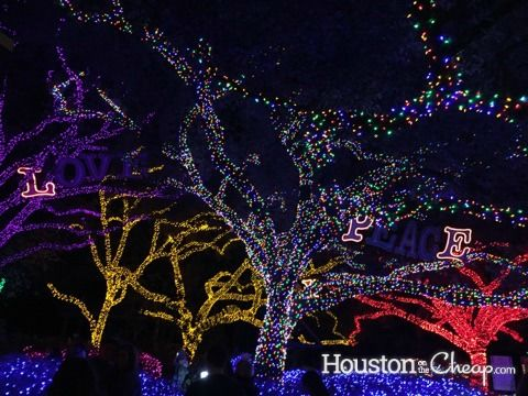 Get In A Festive Spirit Visiting Houston Zoo Lights, Open November 18    January Great Pictures