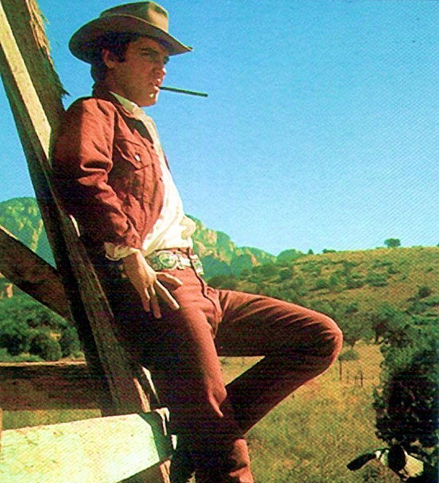 3 3 3 Elvis Presley Elvis Movies Elvis