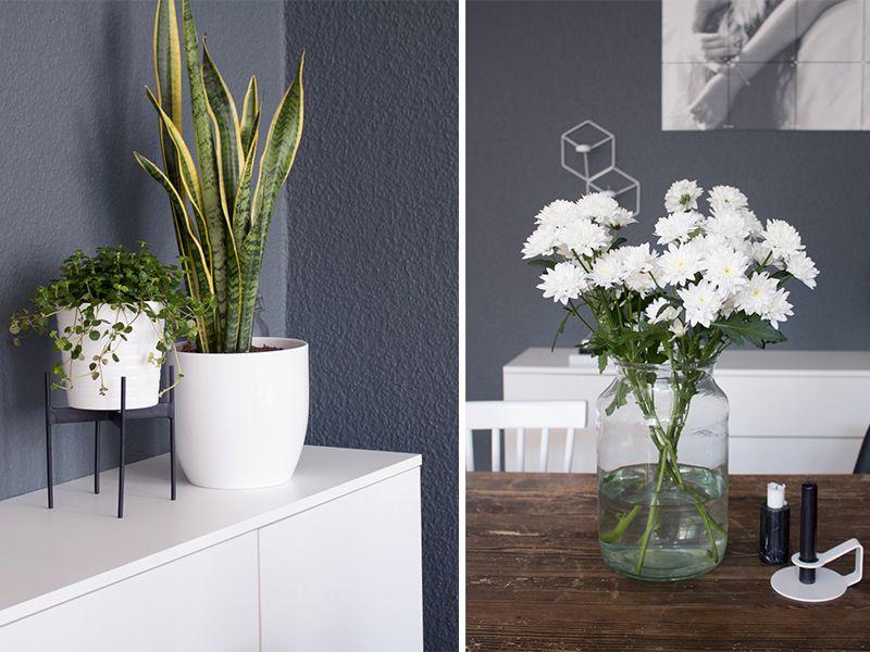Pflanzen und frische Blumen als Deko im Essbereich.