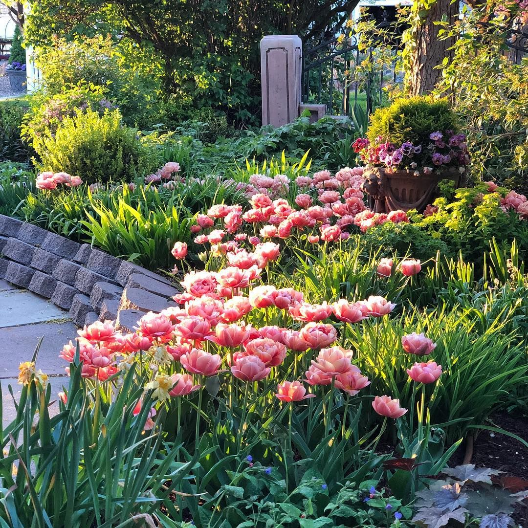 I can't wait until I'm looking out at this again! 🌷🌷🌷(And