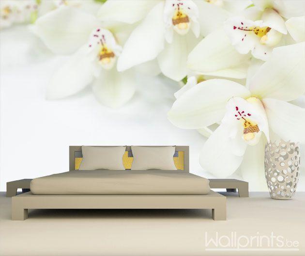 afbeeldingsresultaat voor bloemen fotobehang | behang | pinterest, Deco ideeën