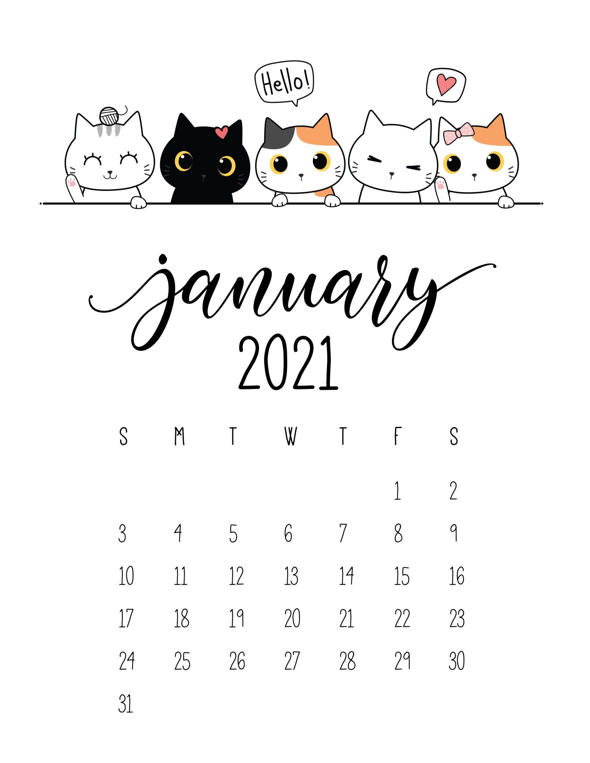 Peeking Cats January 2021 Calendar Peeking Cat Cute Calendar Kids Calendar